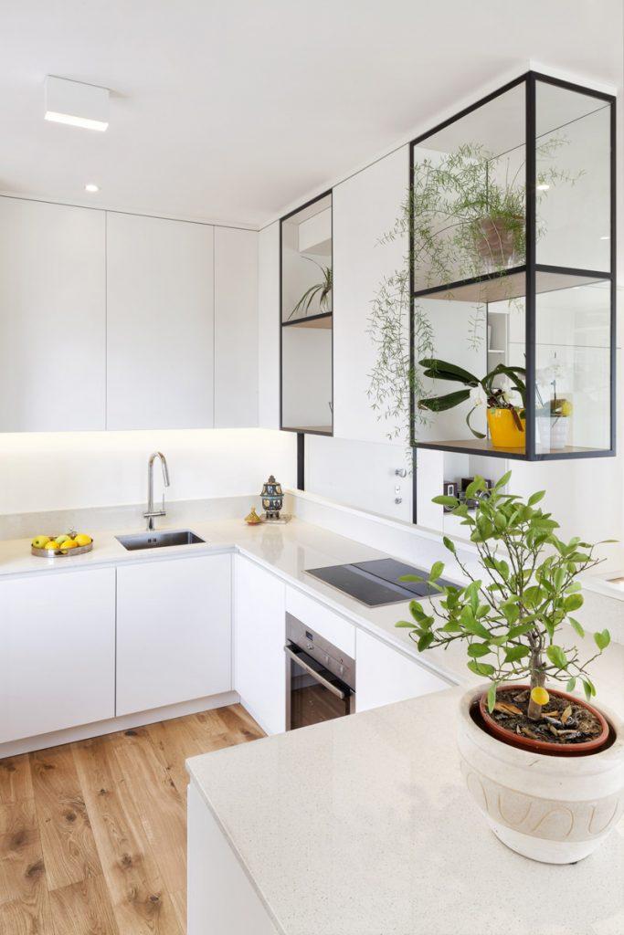 cocina-plantas